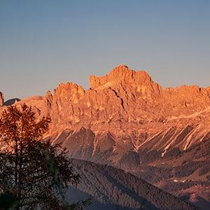 alpengluehen-rosengarten